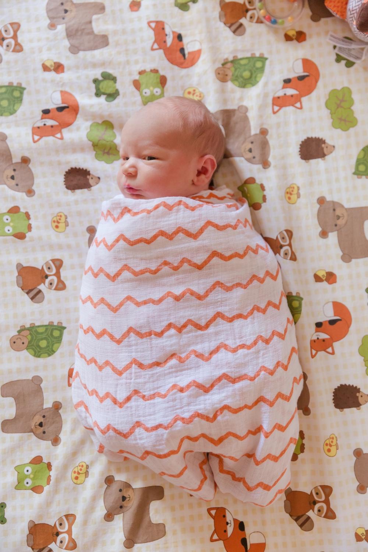 Eli Pickett Newborn_0003.jpg