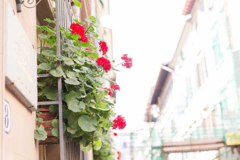 Florence_0042.jpg