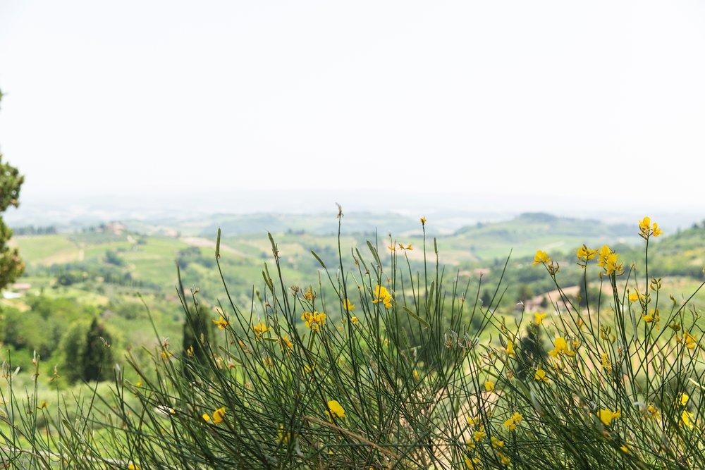San Gimignano_0005.jpg