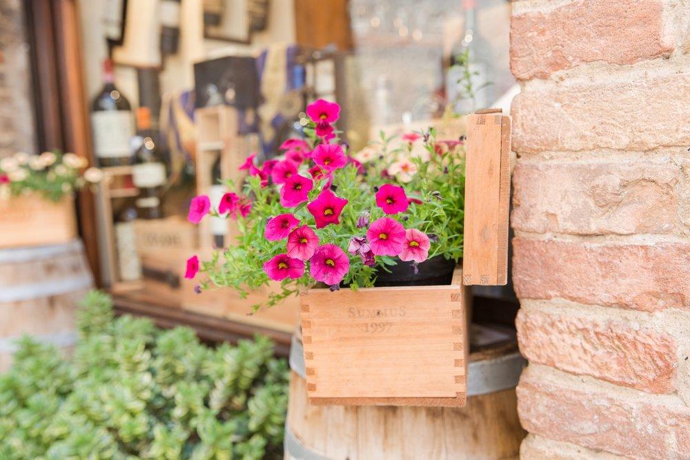 San Gimignano_0027.jpg