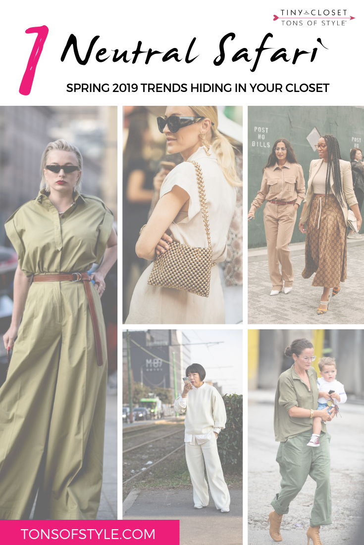 Tiny Closet Tons of Style | Spring 2019 Trends: Neutral Safari