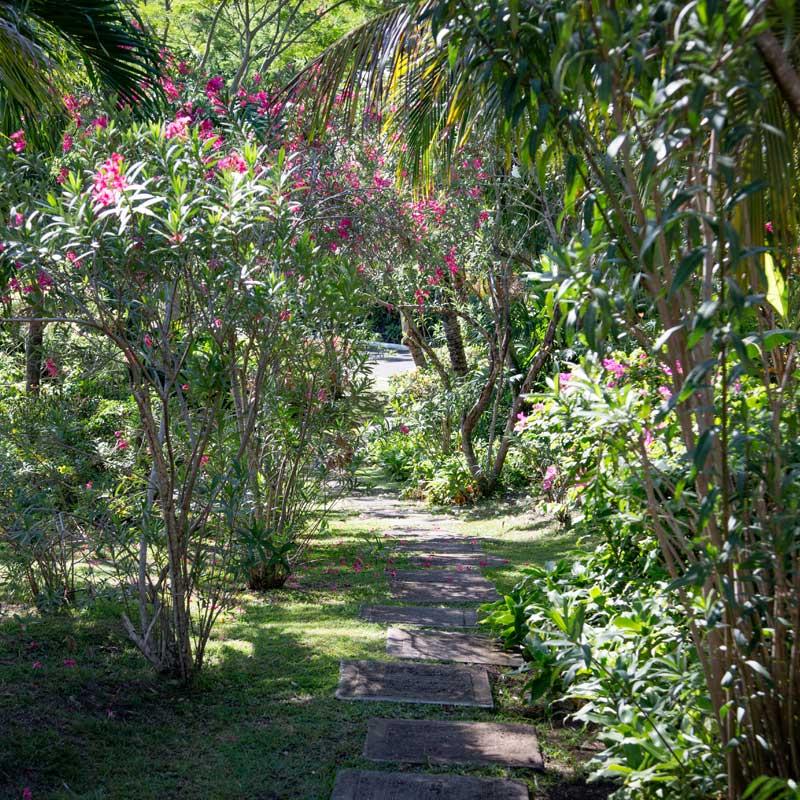 home-walkway.jpg