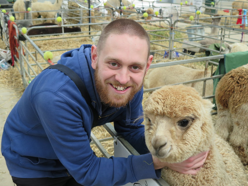 Samuel and Cream Alpaca.jpg
