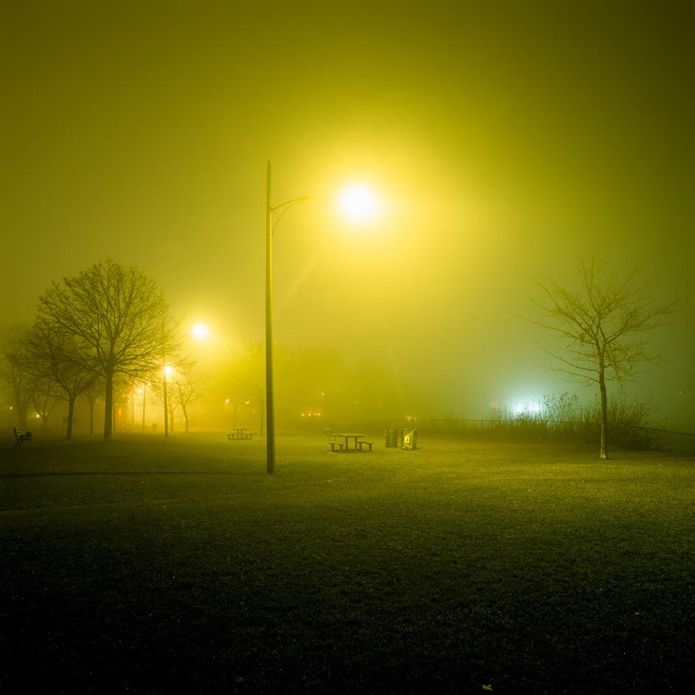 In the Park-1.jpg