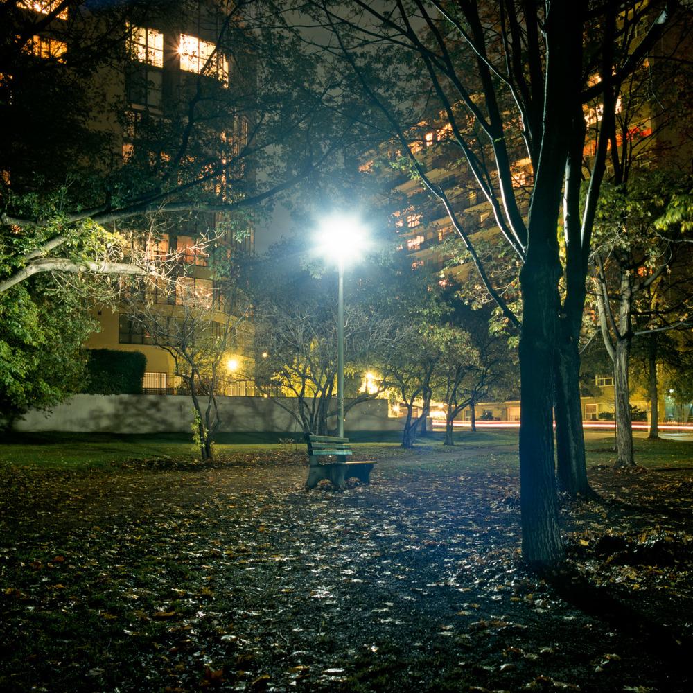 In the Park-2.jpg