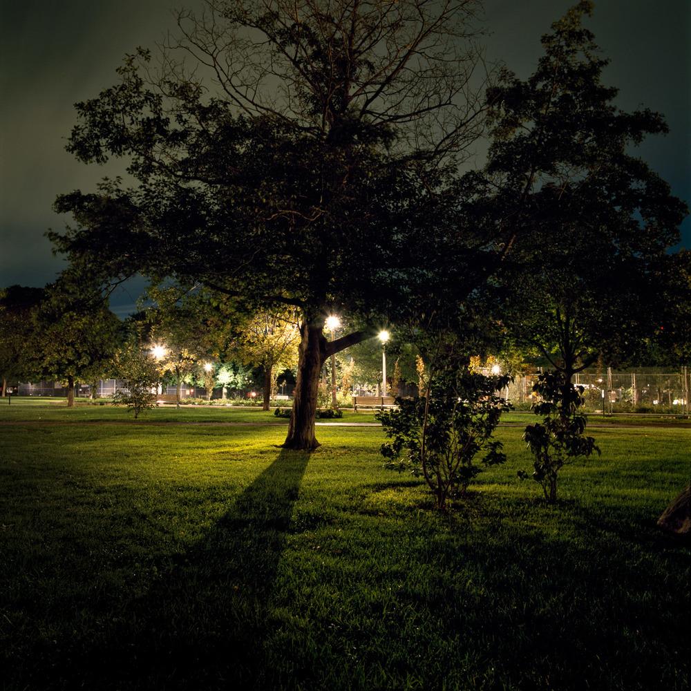 In the Park-6.jpg