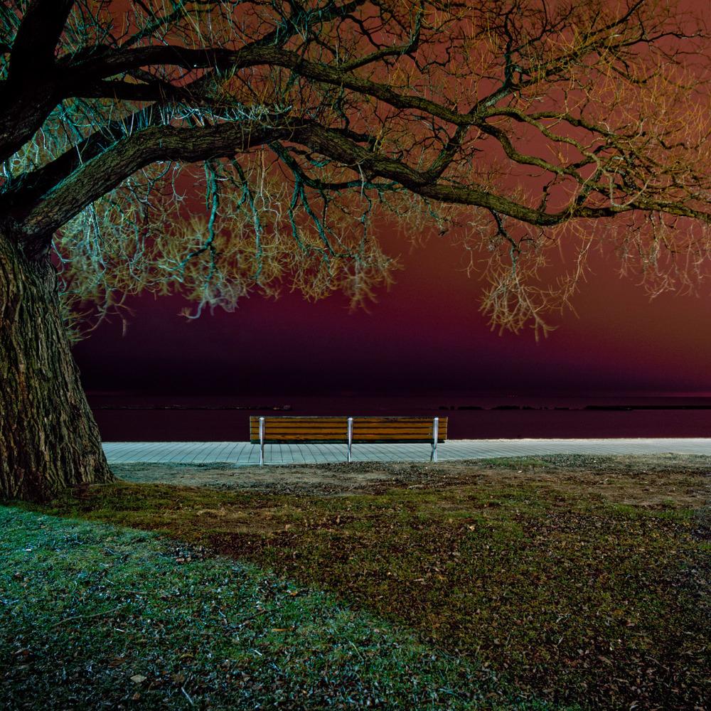 In the Park-22.jpg