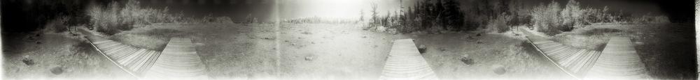 Footprints-2.jpg
