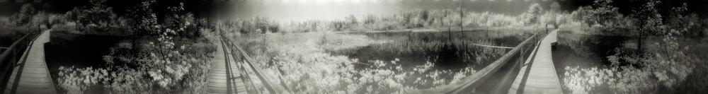 Footprints (1 of 17).jpg