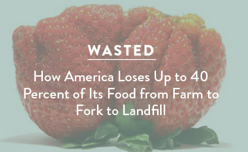 An overview of drivers and solution to America's food waste problem.