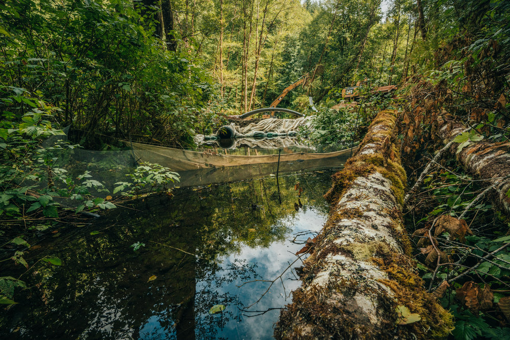 RESTORING RIVERS -