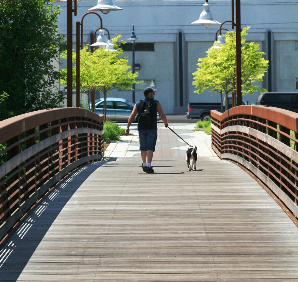 61 Pedestrian Bridge Dog-Walker_W.jpg