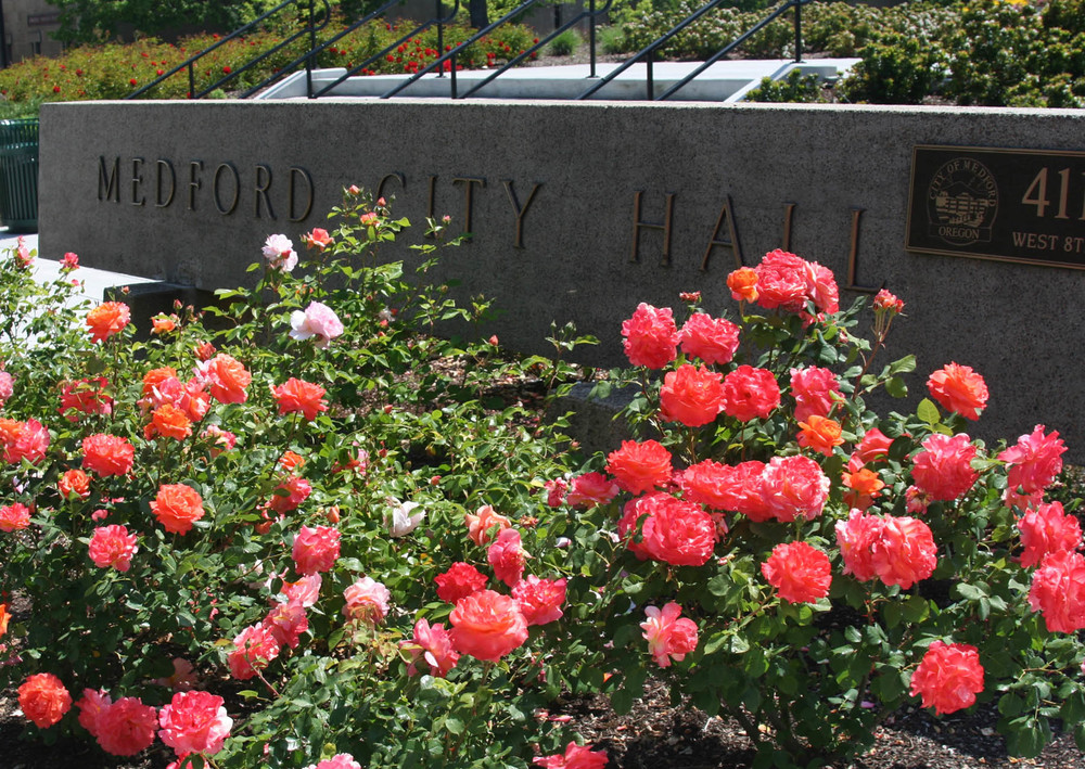 City Hall Roses_web.jpg