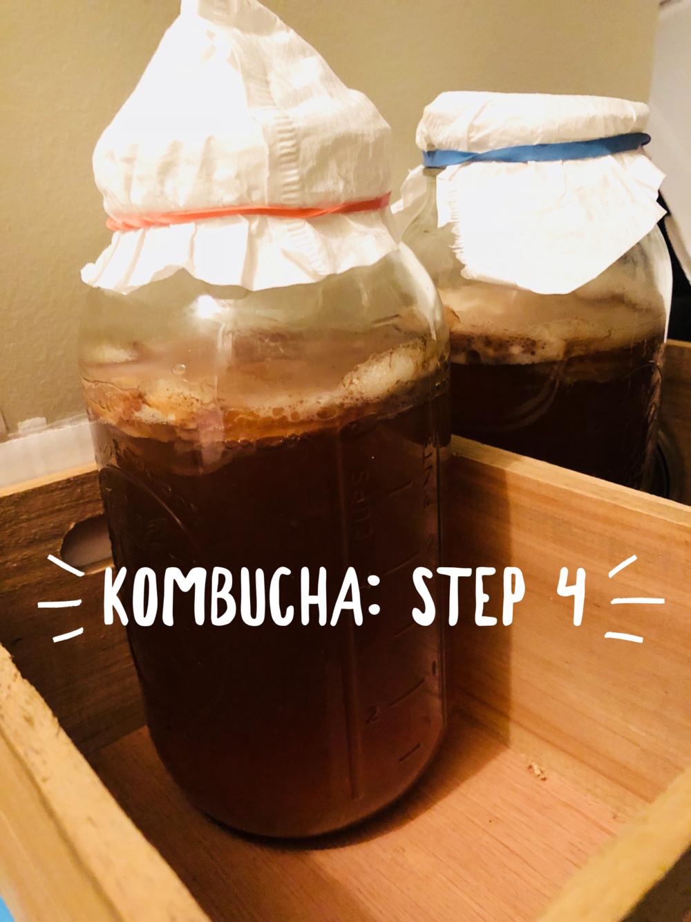 kombucha-step-4