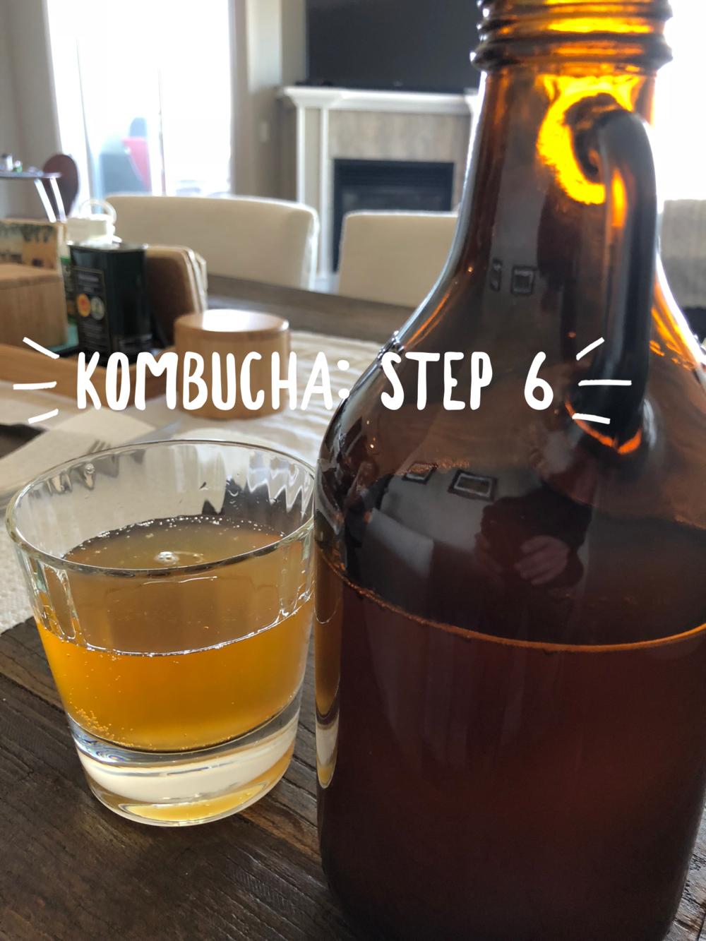 kombucha-step-6
