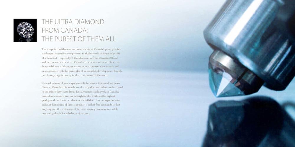 Ultra_Diamonds_Brochure_R5_Page_4.jpg