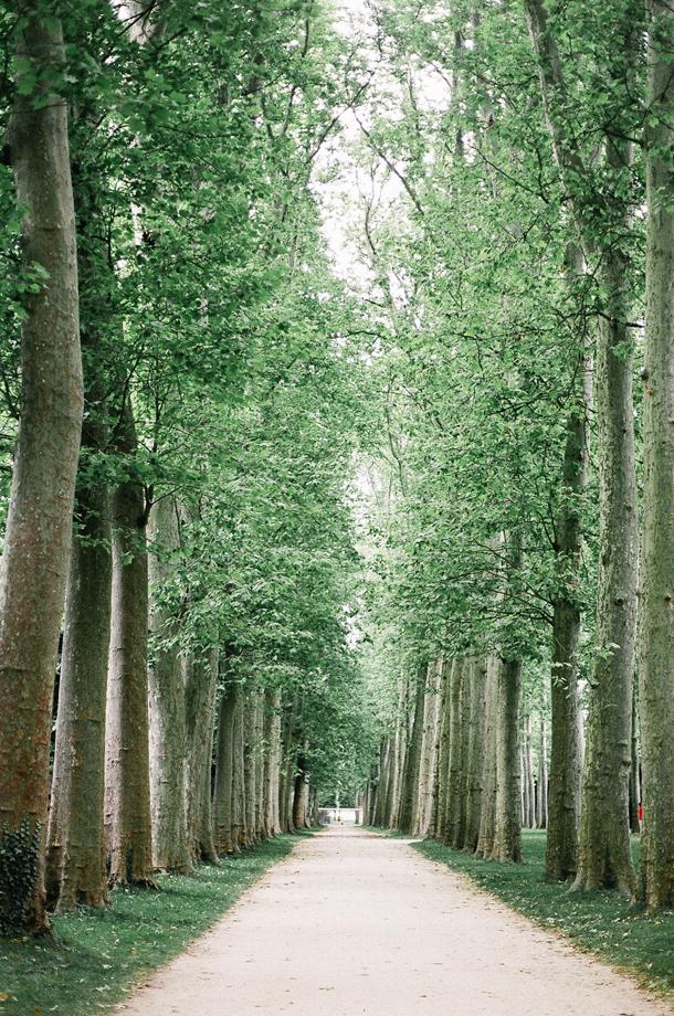 Paris.Versailles.35mmFilm-10