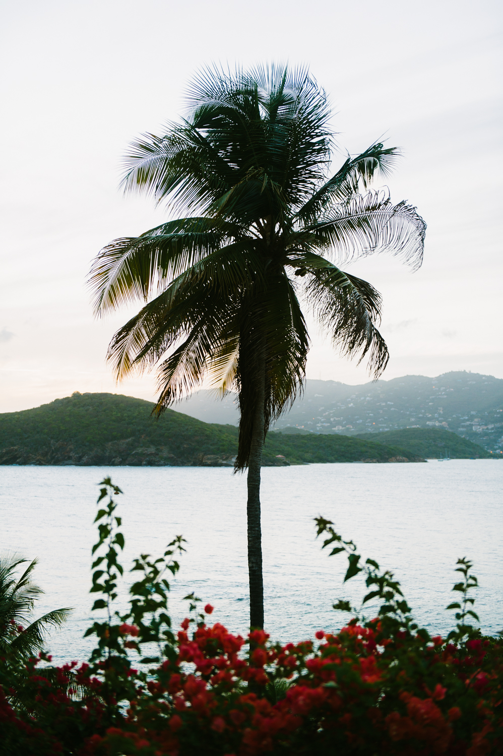 St.Thomas.FrenchmansReef.Wedding.Leme1.jpg