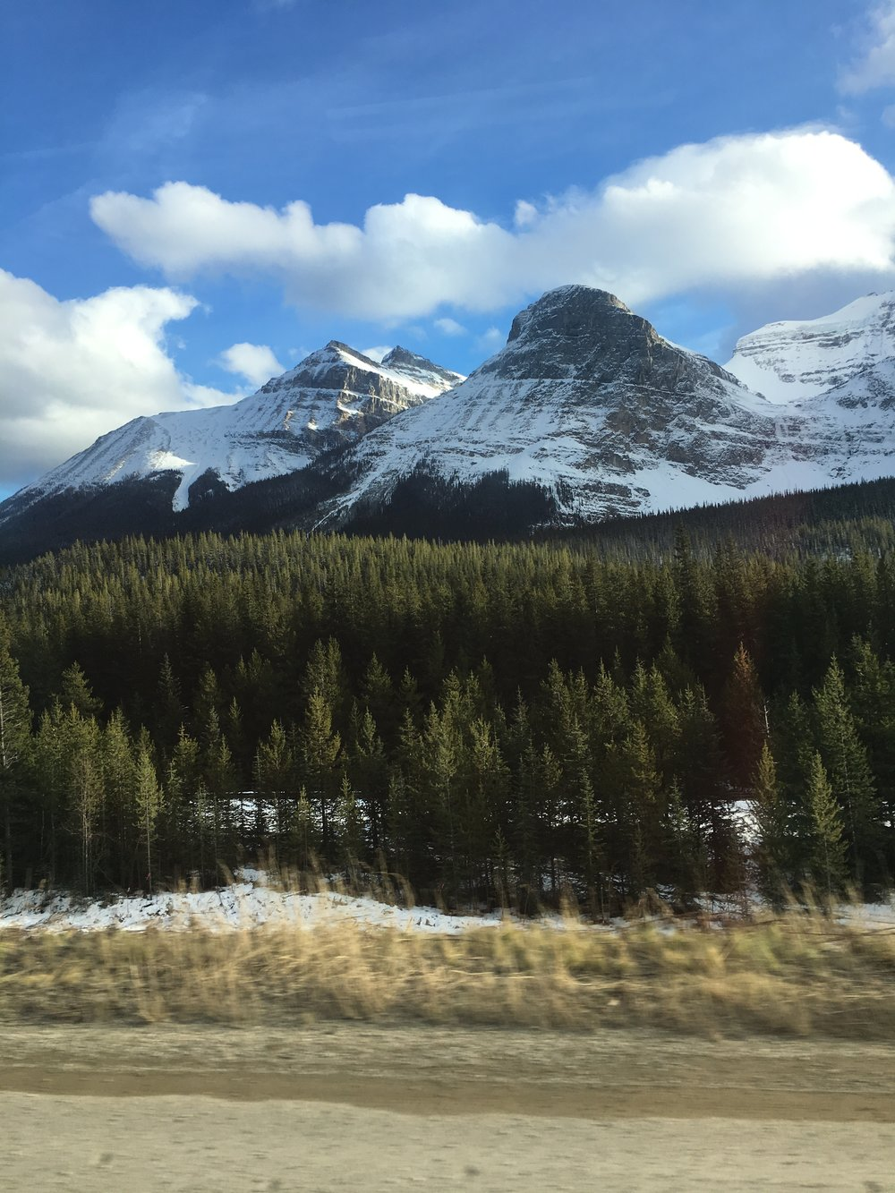 A view of the Rockies on our way back!
