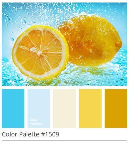 June 2016 color inspiration.jpg