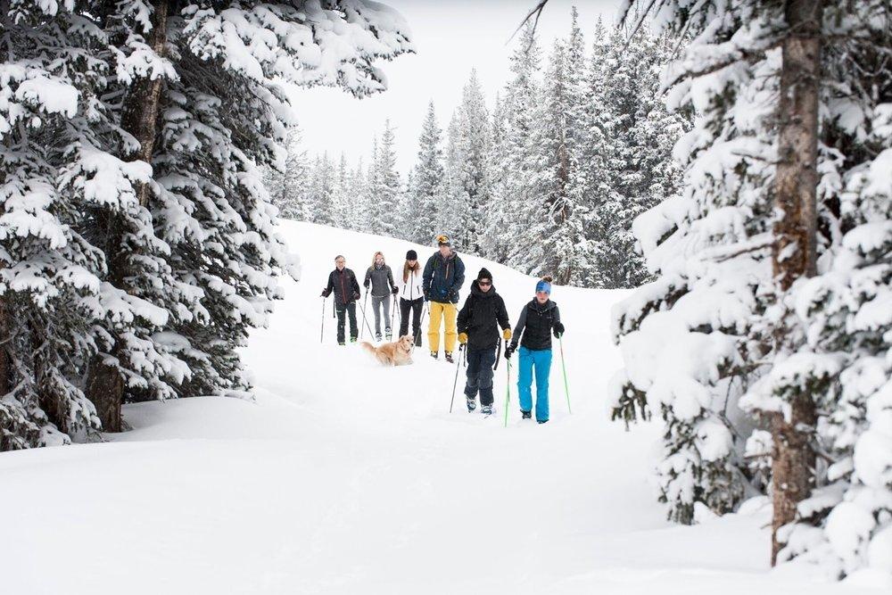 Activity - Ski.jpeg