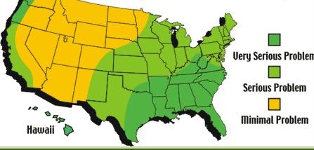 The Algae Danger Zone
