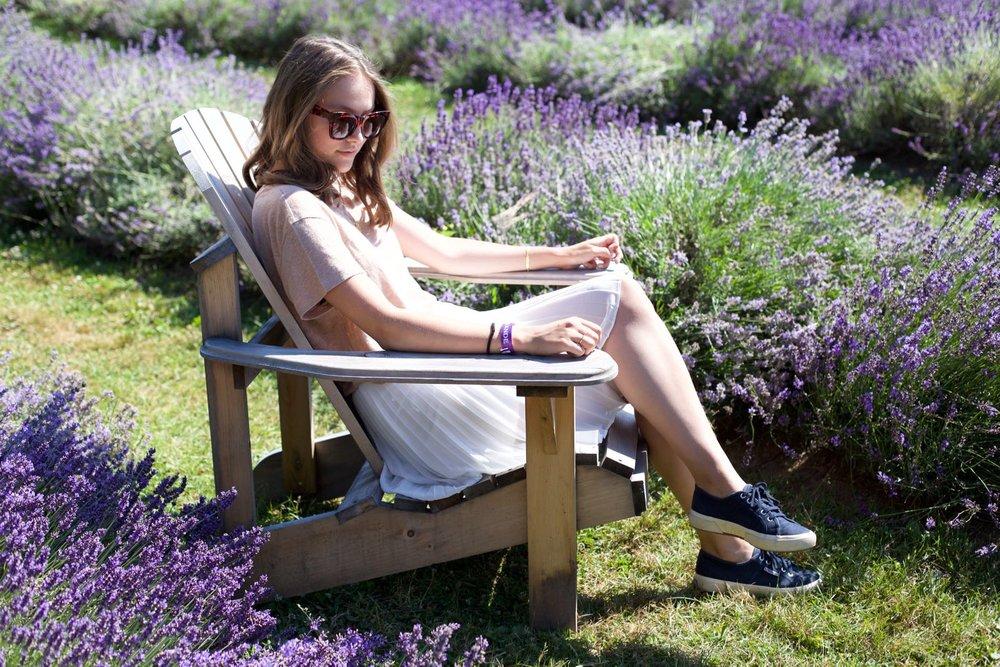 lavender-field - 3.jpg
