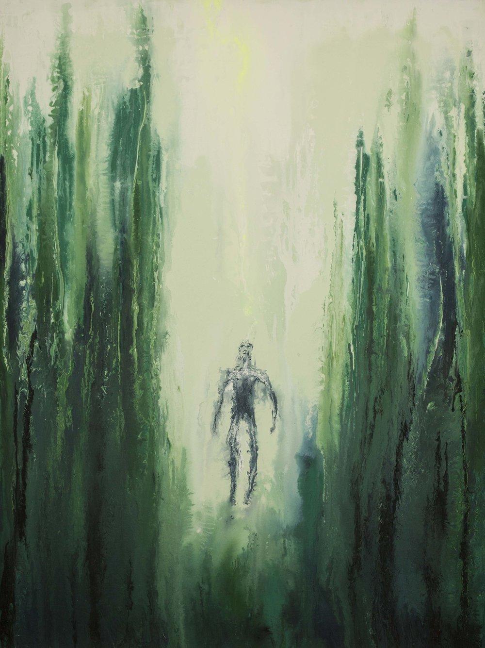 Conexión en el bosque