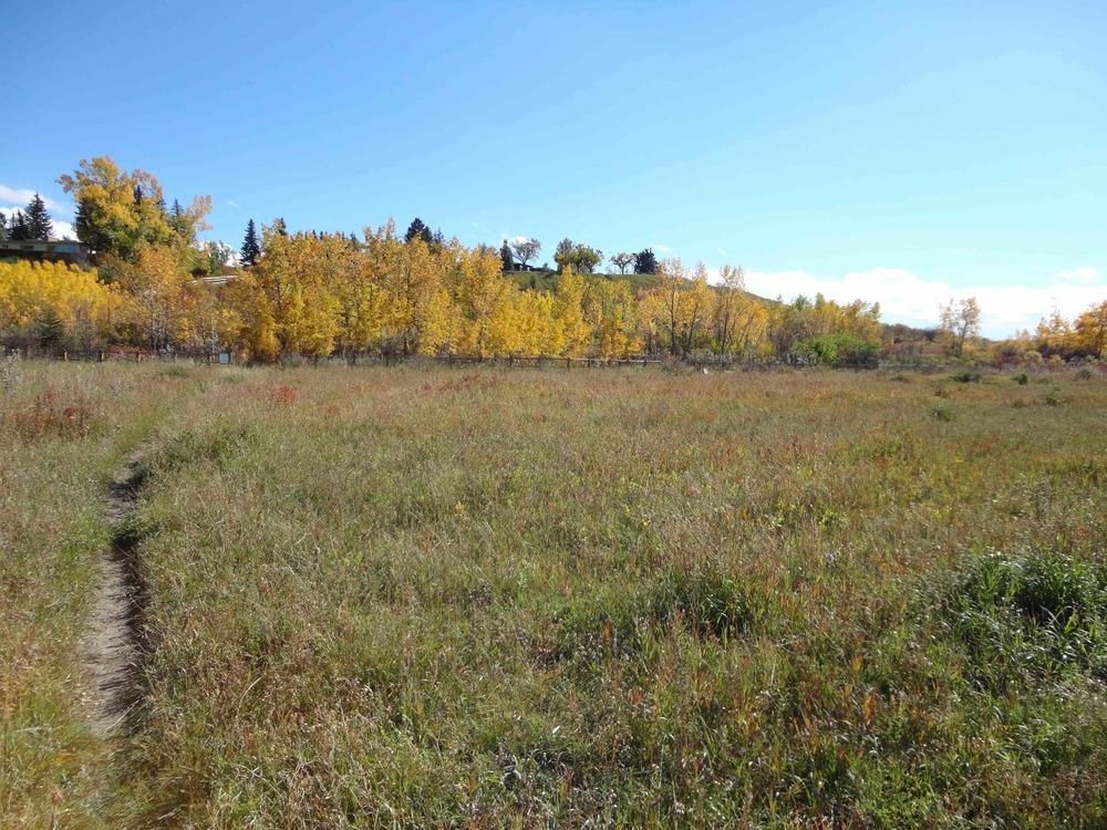 Landsdowne4.jpg