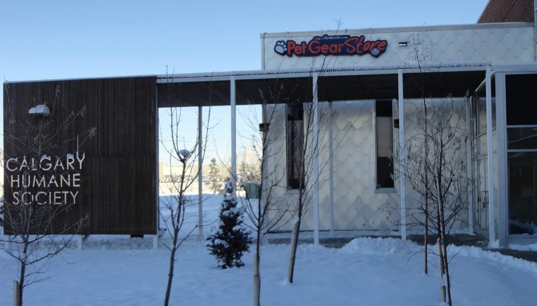 Pet Gear Store — Calgary Canine
