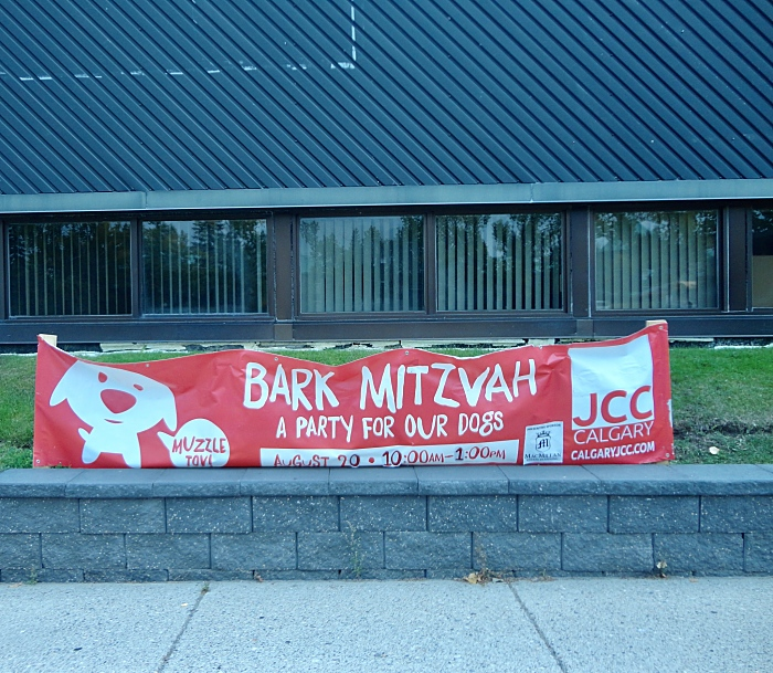 Bark Mitzvah.jpg