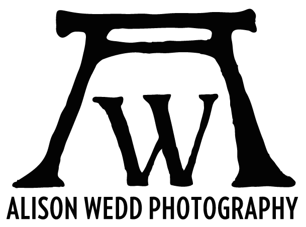 Alison Wedd Photography