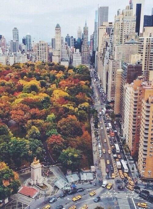 Autumn at Columbus Circle