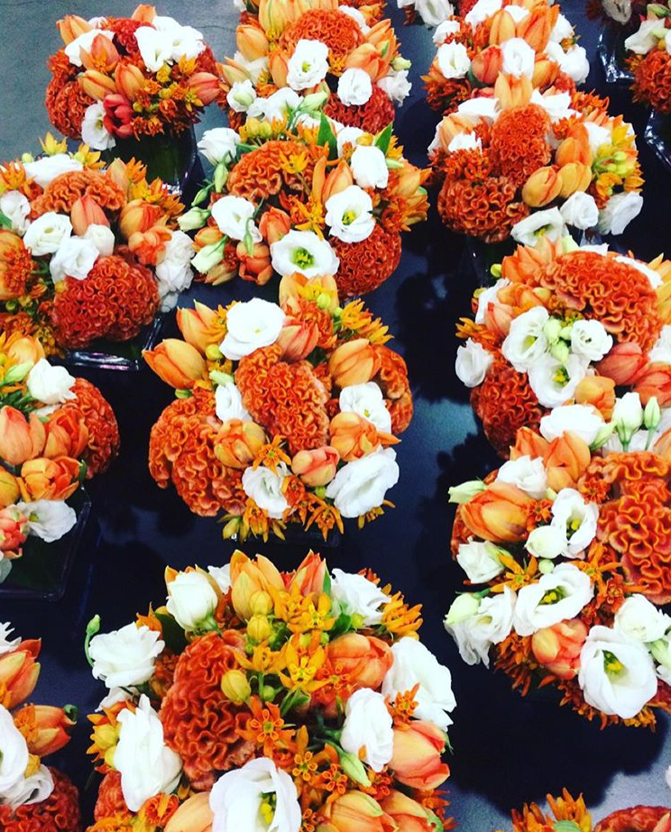 Harvest Blooms
