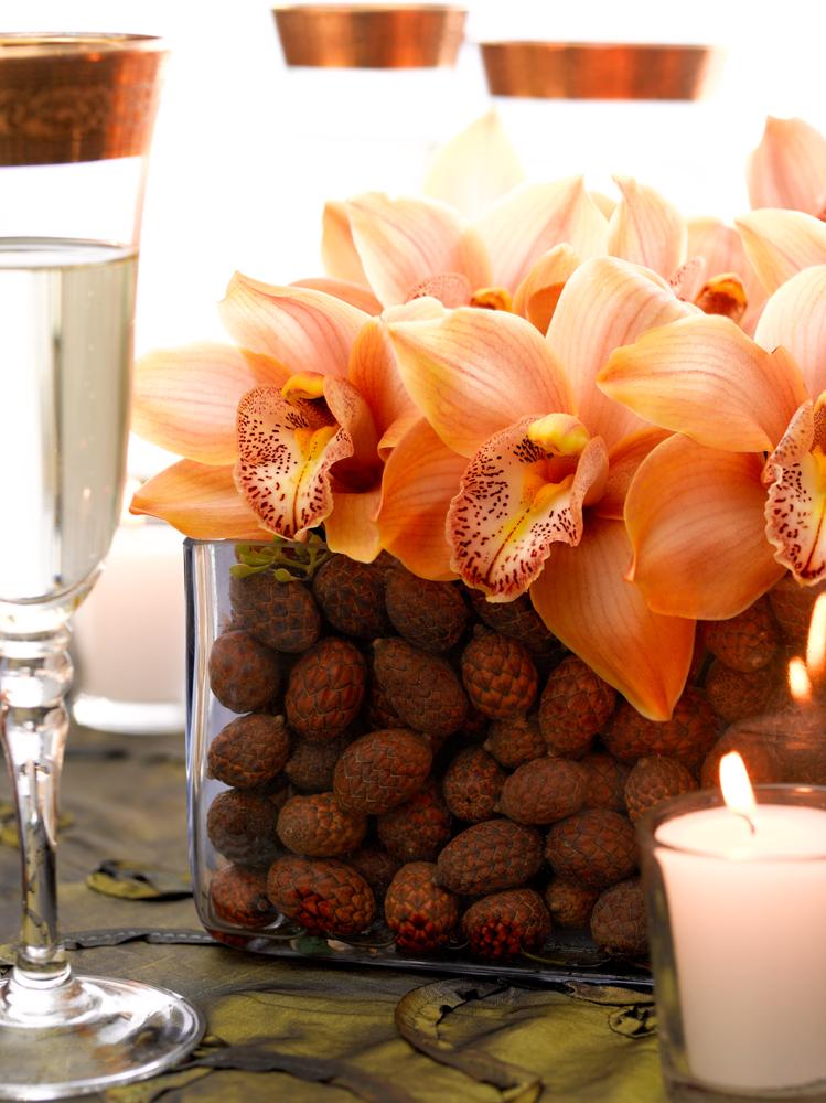acorn details.jpeg