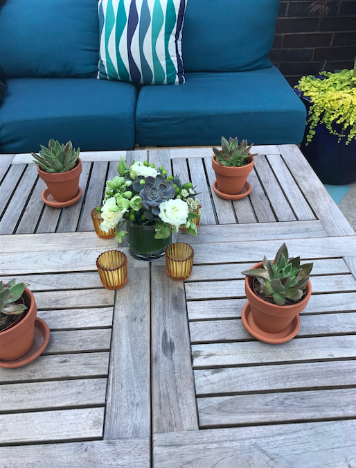 Potted Plants On Table - B Floral