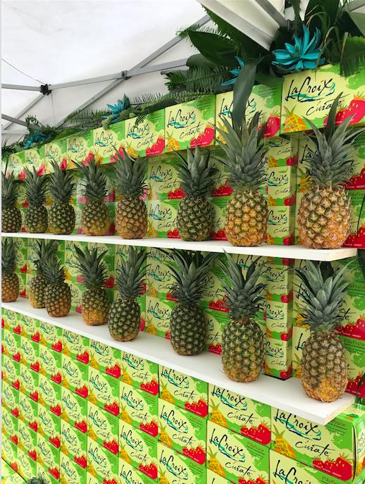 LaCroix Pineapples Display - B Floral