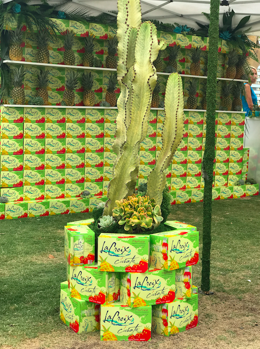 LaCroix Cactus Display - B Floral