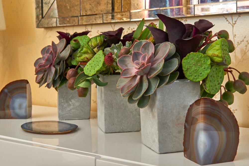 Succulents As Home Decor - B Floral