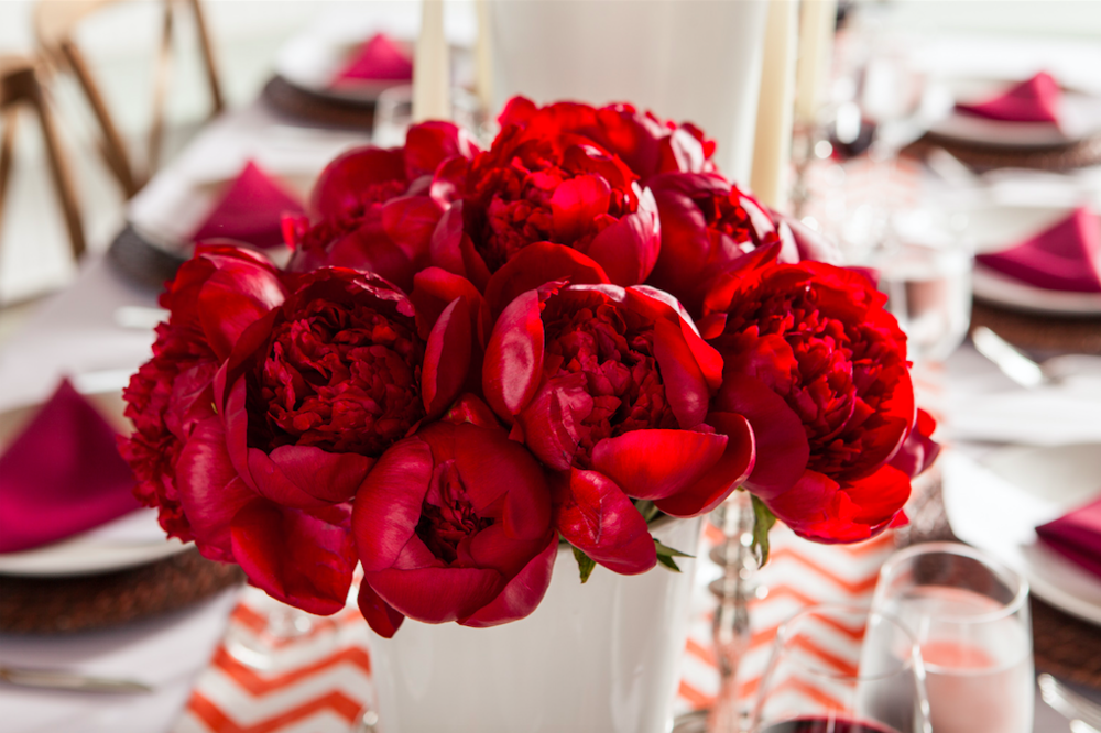 Bright Red Flowers Set - B Floral