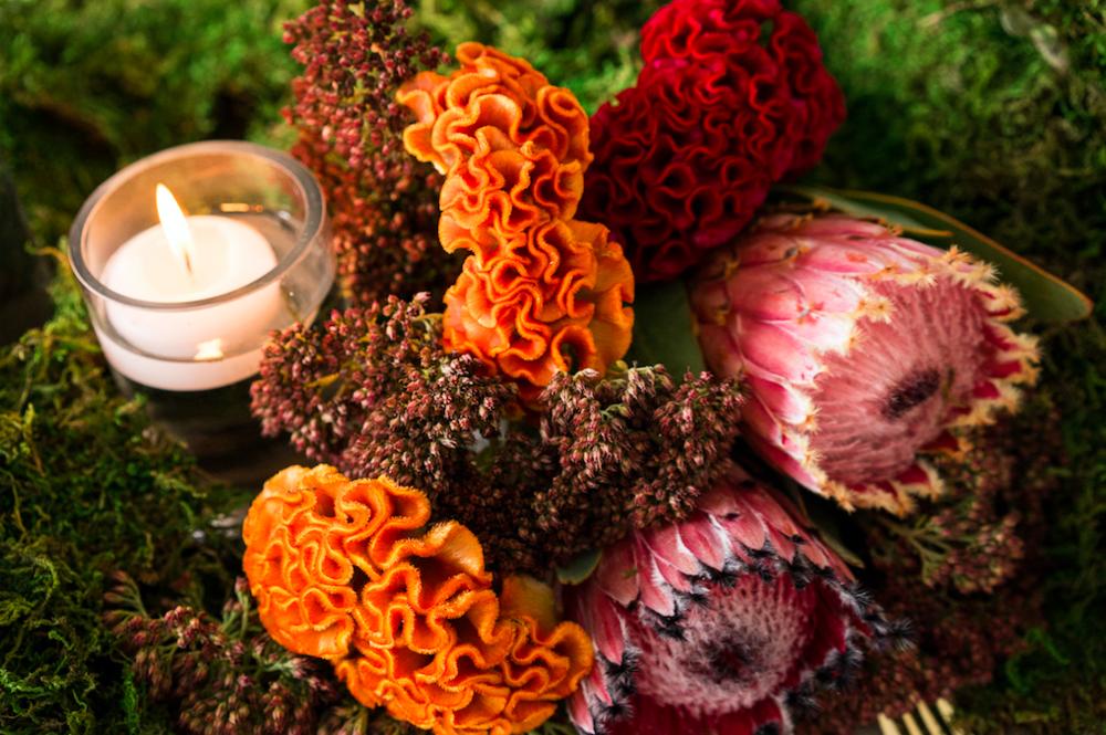 Autumn Flowers Close Up - B Floral