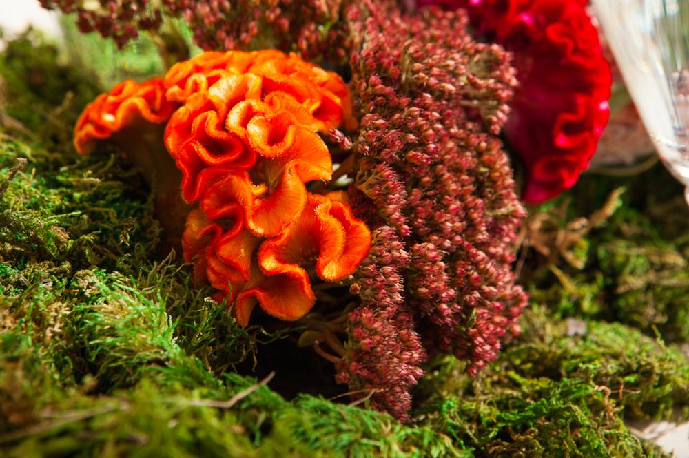 Bright Color Floral Arrangement - B Floral