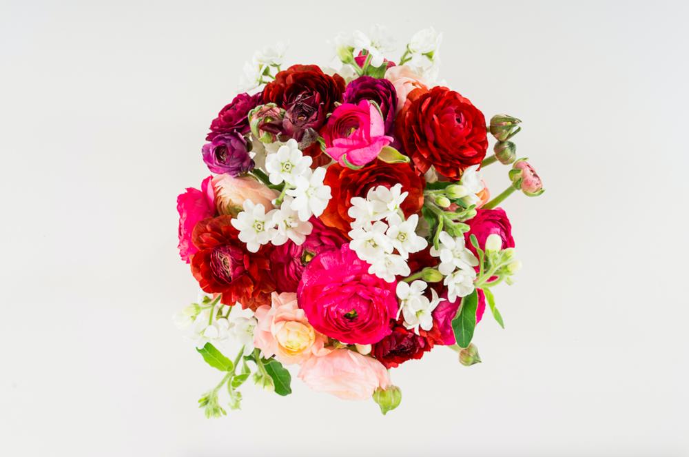 Bright Colorful Florals - B Florals