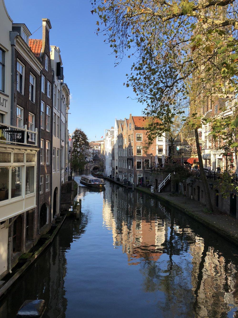Utrecht - B Floral