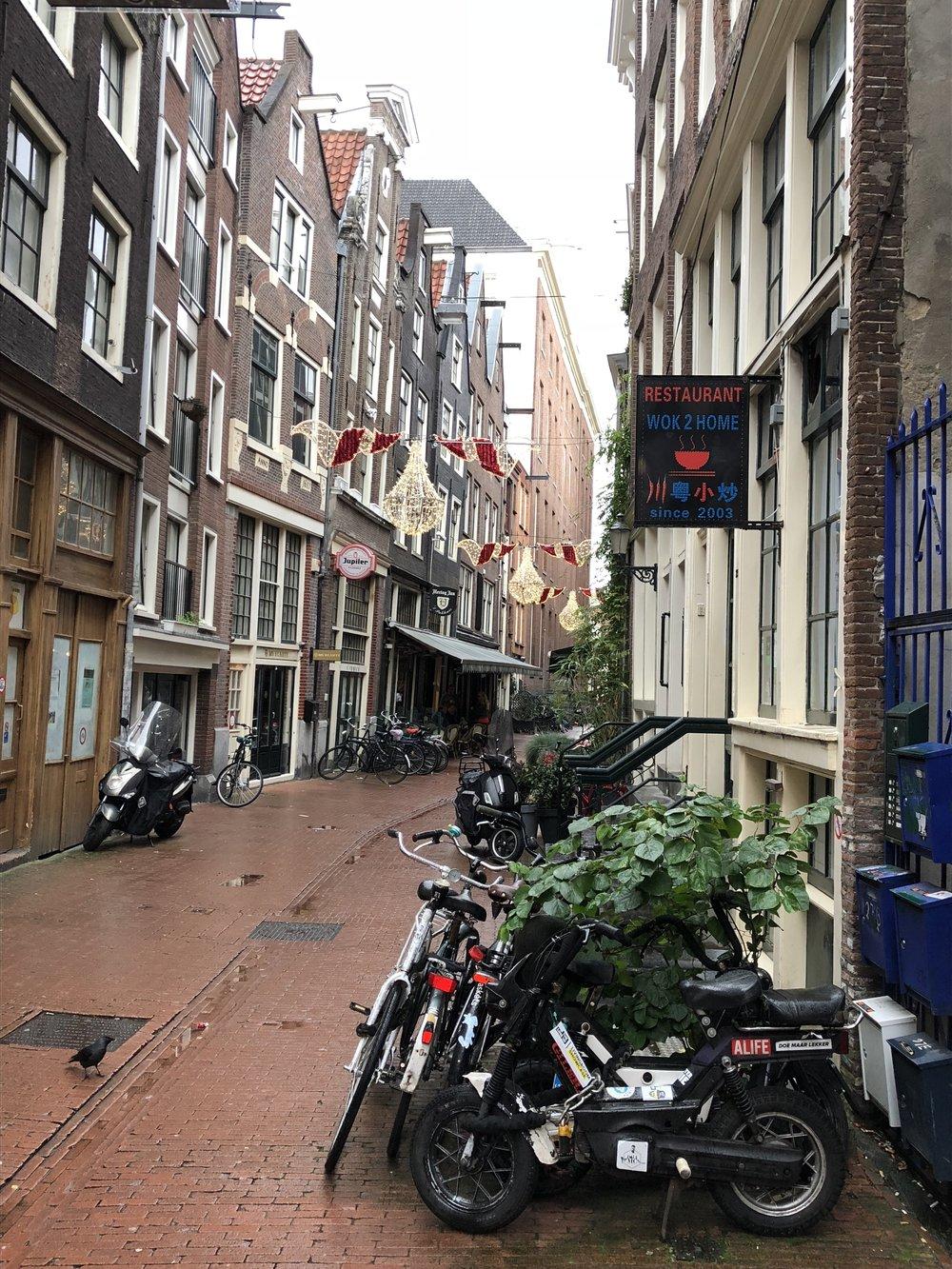 Amsterdam Alley - B Floral