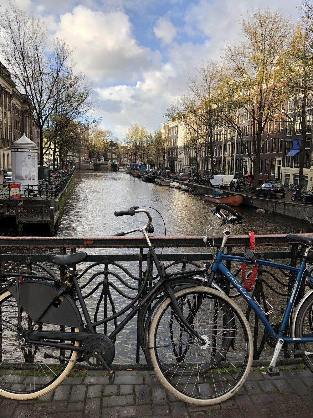 Amsterdam Bike - B Floral