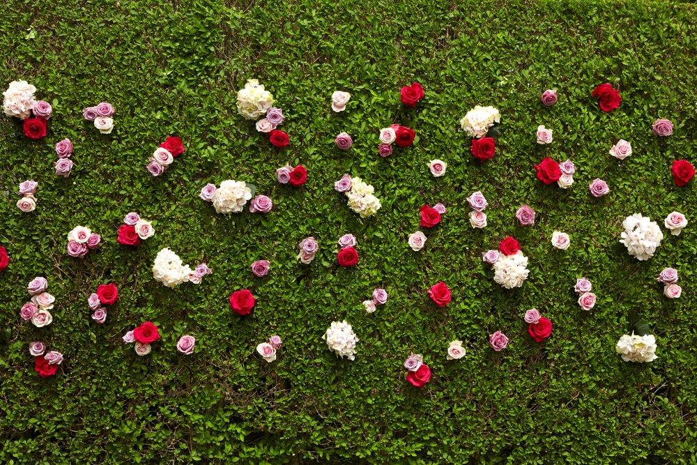 Floral Hedge- B Floral