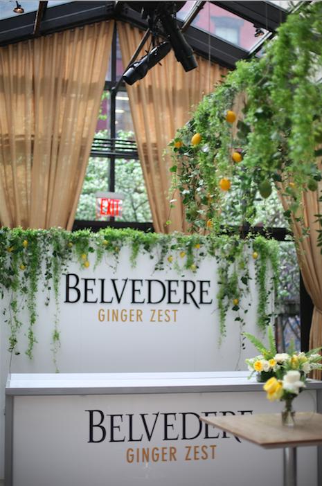 Belvedere4.png