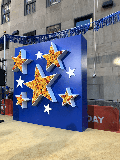 TODAY Show Star Flower Wall- B Floral