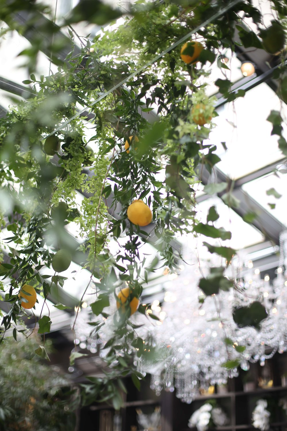 Hanging Lemon & Greenery Installation- B Floral